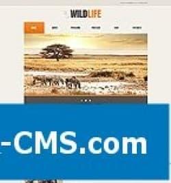 Шаблон Joomla 2.5 - WildLife id45505