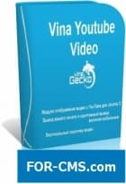 Vina Youtube Video Player & Chanel + roundabout