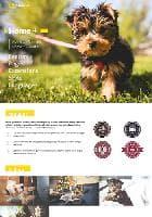 JM Animals v1.02 EF4 - премиум шаблон для сайта о животных