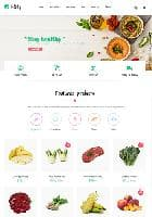 Vina iFoody v1.1 - premium template of online store